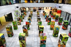 Environmental Education and Biodiversity Exhibitions for Schools in Hong Kong