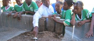 Sustainable Organic Integrated Livelihoods (SOIL), Haiti